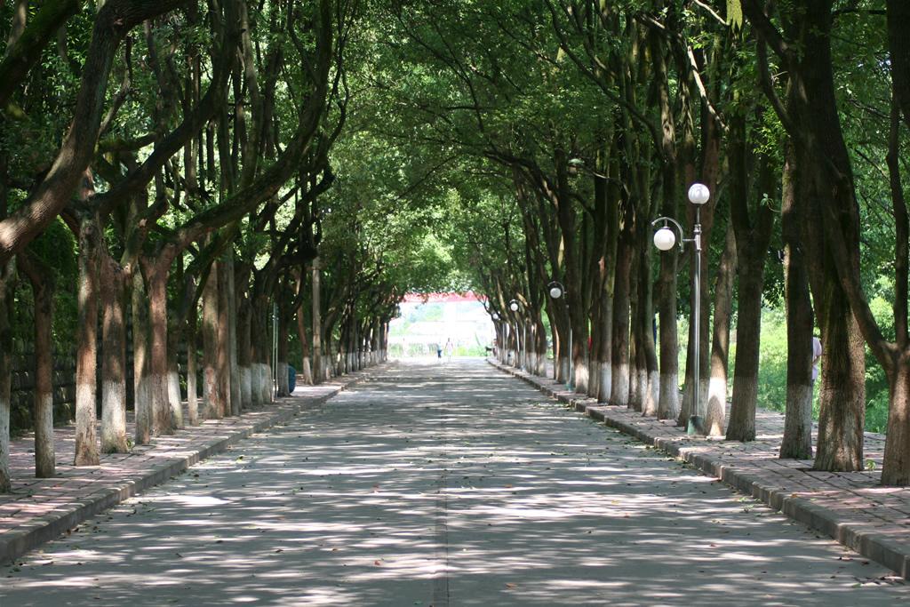重庆文理学院校园风景(11659)