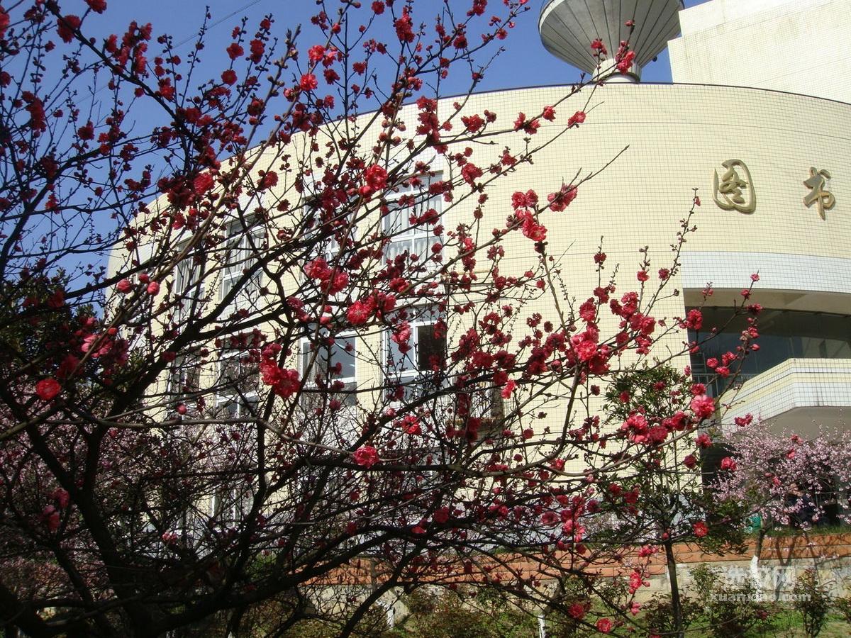 贵州大学明德学院校园风景(25142)