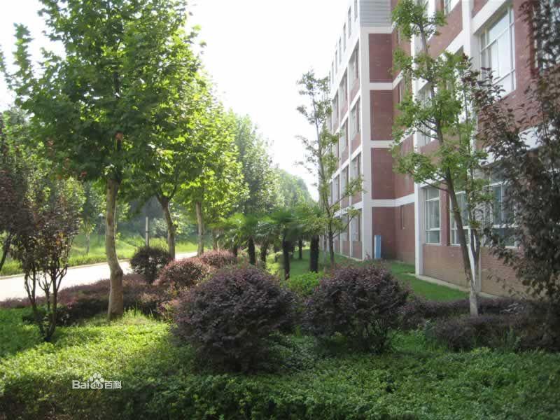 武汉科技大学城市学院校园风景(20788)