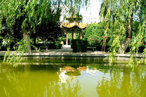 陕西能源职业技术学院校园风景(22033)