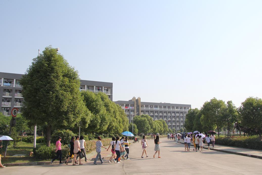 安徽国际商务职业学院校园风景(17092)
